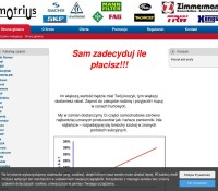 Motrius.pl – Automotive polnischer Online-Shop Automotive,