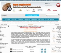 Die Automobil Online-Shop polnischer Online-Shop Automotive,