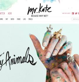MrKate – amerikanischer Schmuck-Online-Shop